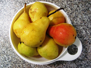 Fresh, ripe pears in a bowl.
