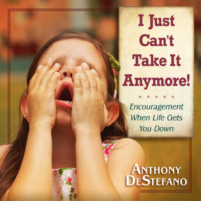 I Just Can't Take It Anymore by Anthony DeStefano