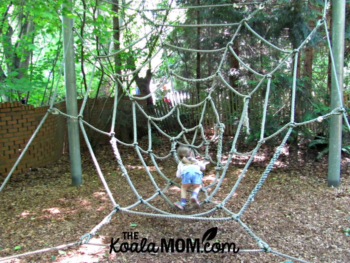 Rope spiders web for kids to play in at the Seattle Woodland Park Zoo