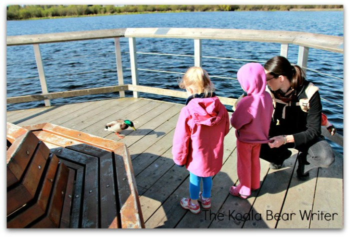 Mom and two girls feeding a Mallard Duck at Swan Lake Nature Sanctuary