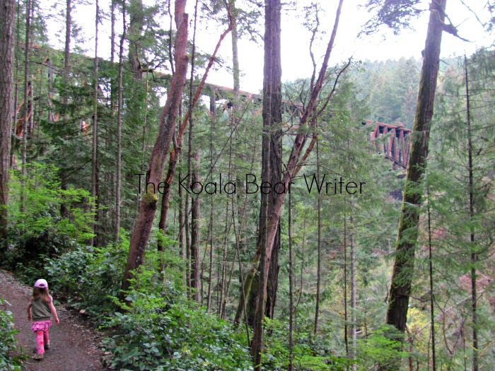 The train trestle above Goldstream Park