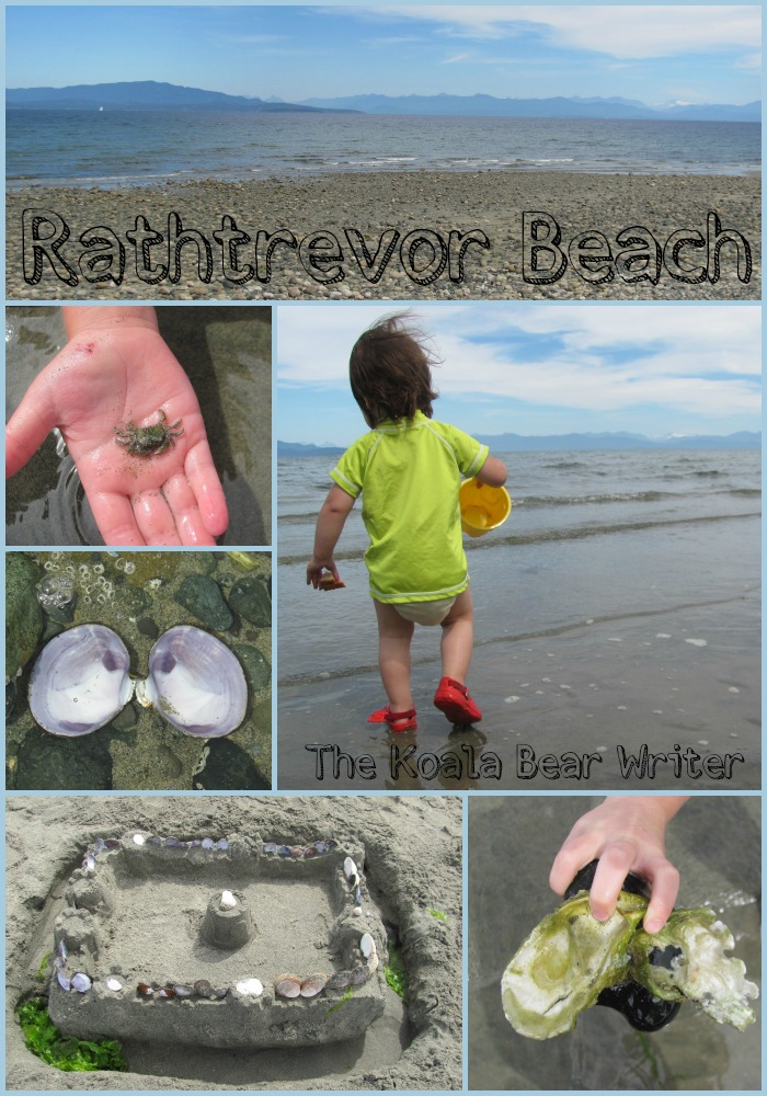 Rathtrevor Beach collage - sandcastle, shells, holding a crab, child playing