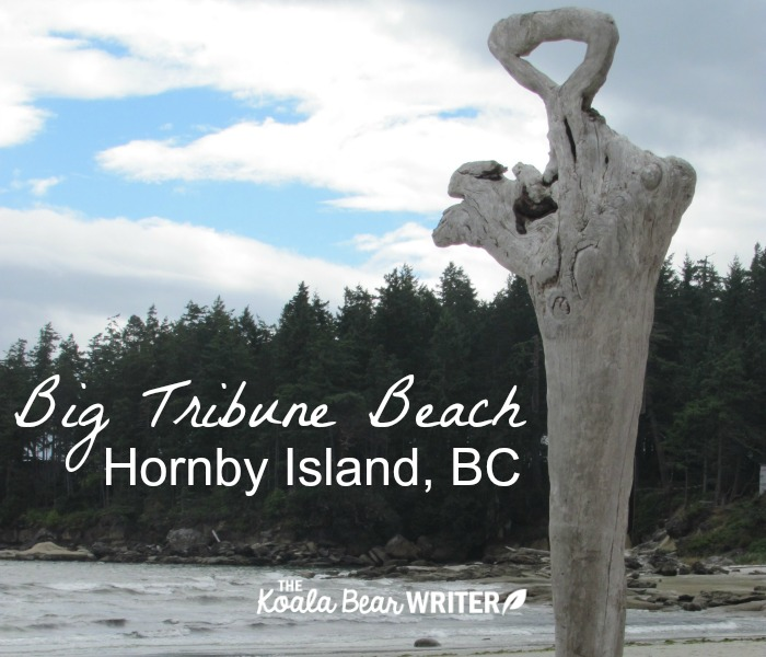 Big Tribune Beach on Hornby Island, BC