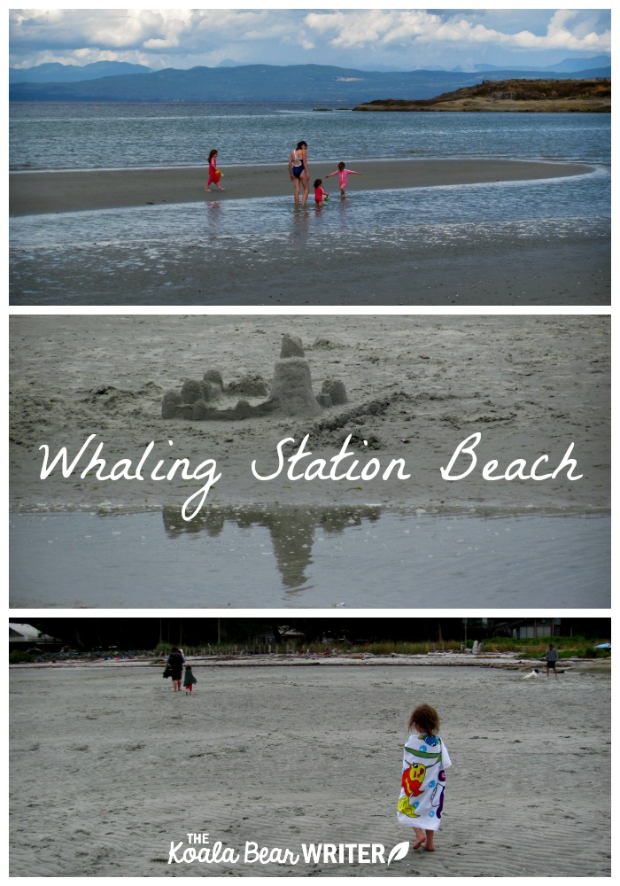 Whaling Station Beach on Hornby Island