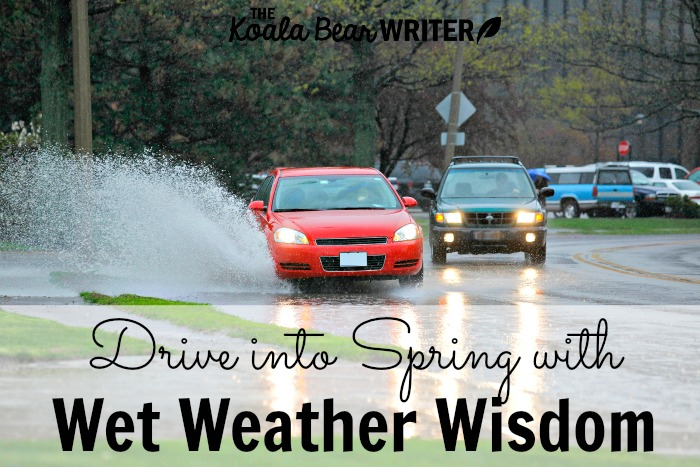 Drive into Spring with Wet Weather Wisdom from State Farm