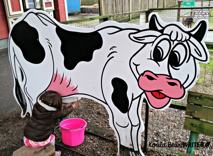 "Toddler ""milking a cow"" at an educational farm in Vancouver, BC"
