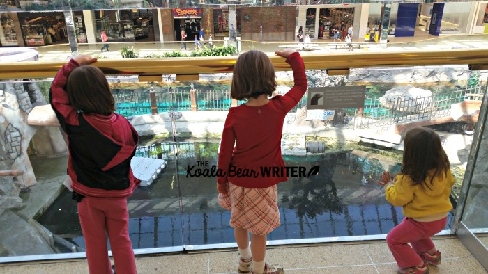Girls watching the sea lion show at West Edmonton Mall