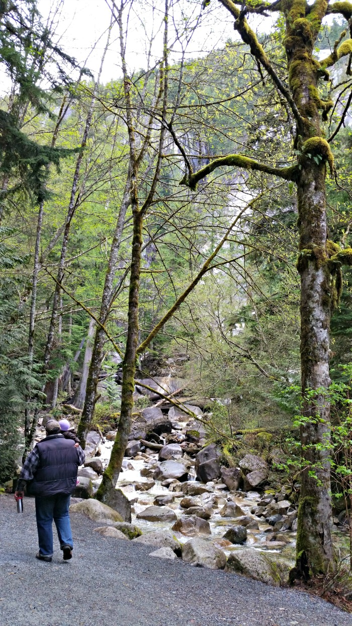 Hiking to Shannon Falls