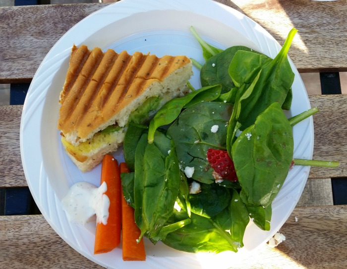 Paninis and salad at Fry's Corner Beestro in Surrey, BC