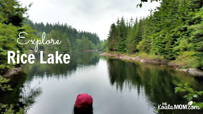 Explore Rice Lake in Vancouver, BC.