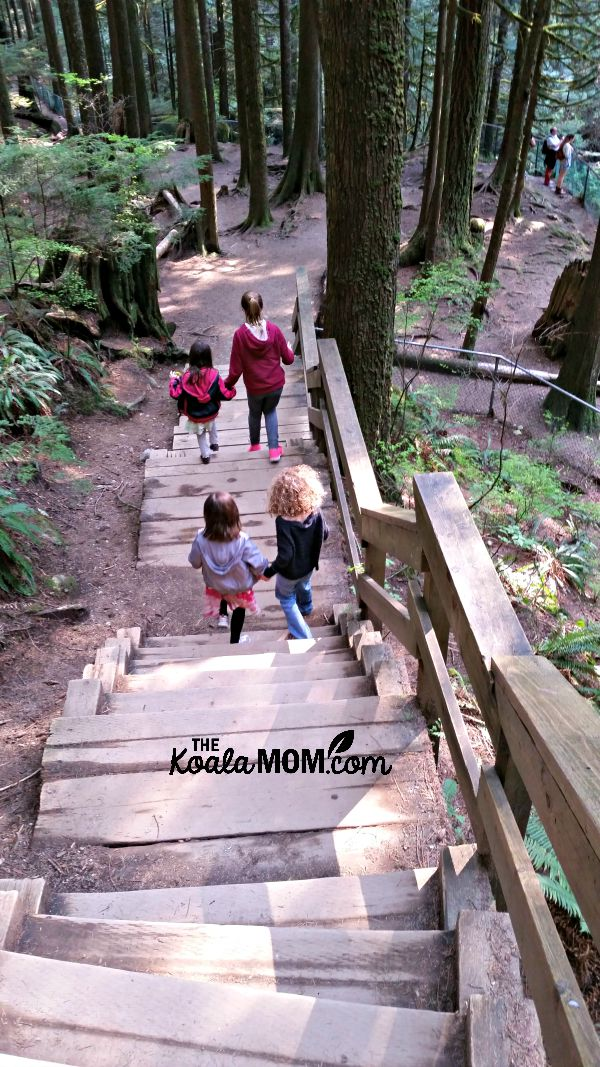 Cousins hiking down the stairs at Lynn Canyon