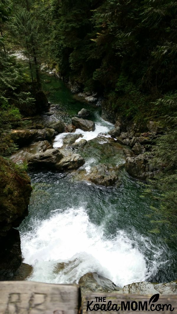 Lynn Canyon - one of my favourite fun mom's night out ideas