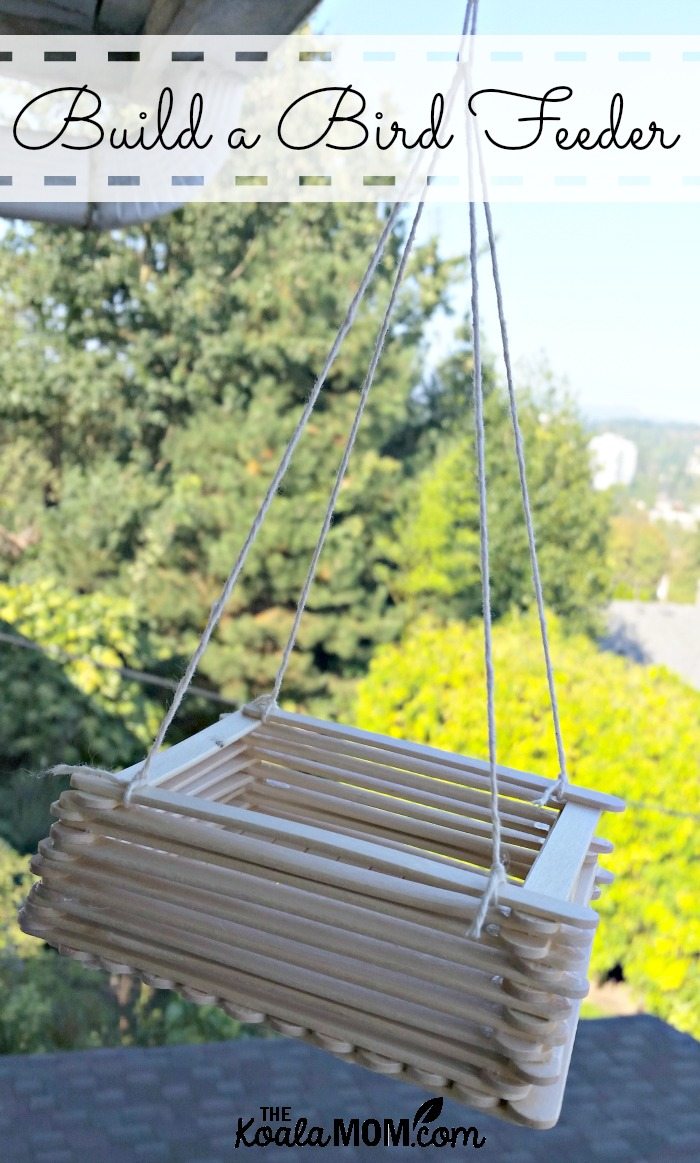 Build a bird feeder out of popsicle sticks