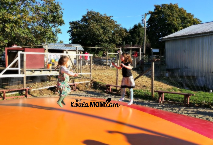 Jade and Lily jump on the jumpy thing at Taves Family Farm