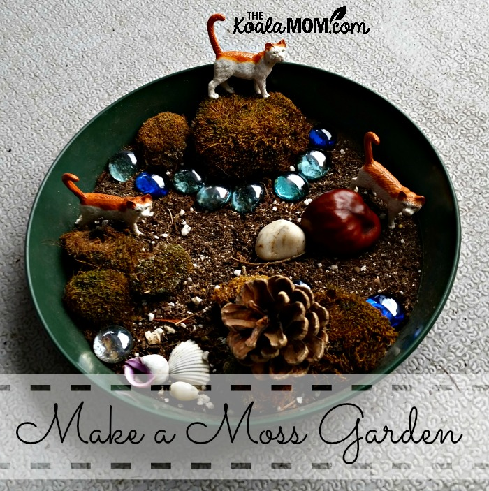 Make a moss garden (also known as a fairy garden)