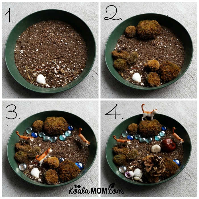 Steps to make a moss garden