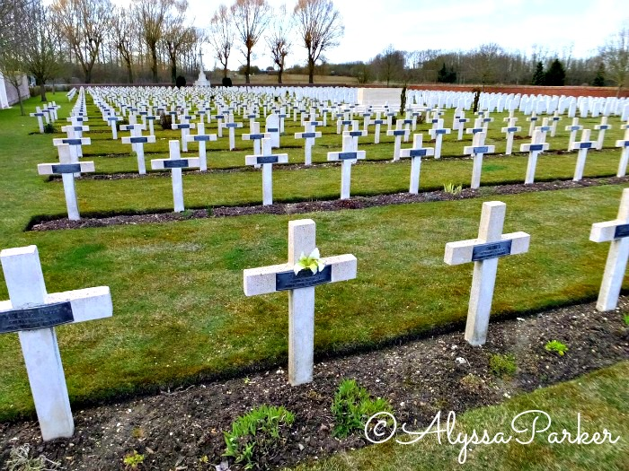 Lily on a cross in a war cemetery in France
