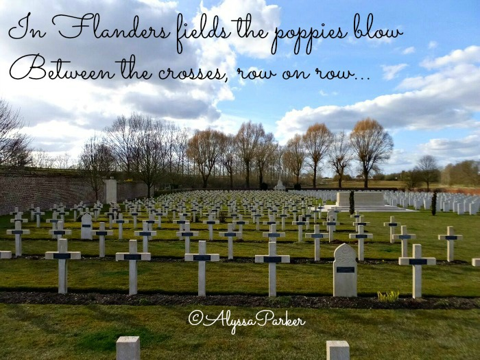 Rows of crosses in a war cemetery in France
