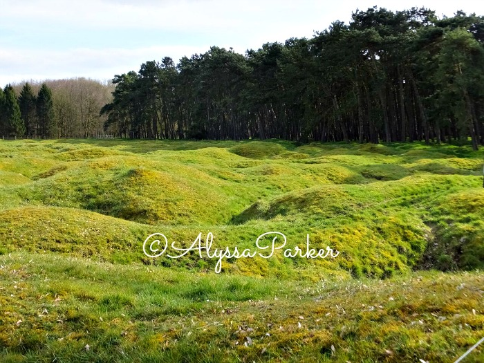 Hummocks of ground around the Vimy Memorial in France (thought-provoking images for Remembrance Day)
