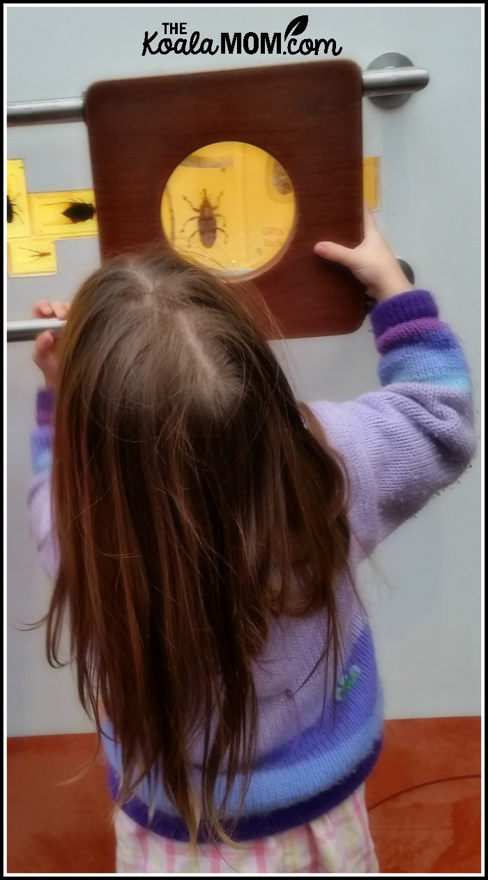 Jade looking at beetles with magnifying glass at Telus World of Science