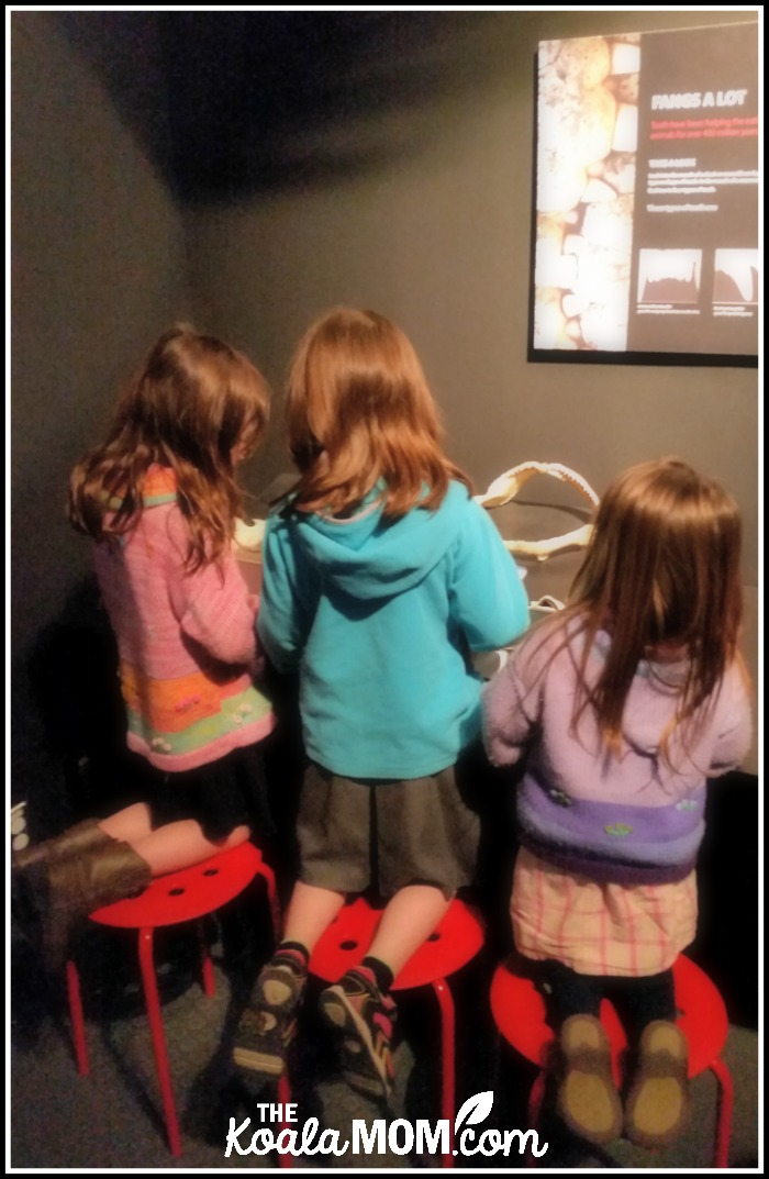 Girls playing with the hands-on items at BodyWorlds at Telus World of Science in Vancouver