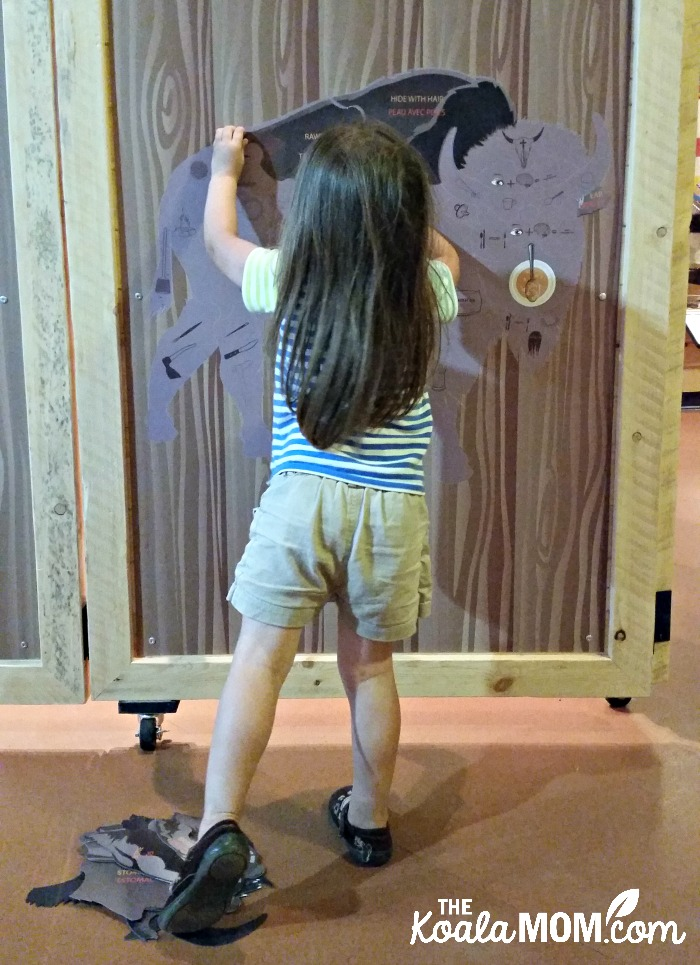 Toddler doing the bison puzzle at Rocky Mountain House National Historic Site