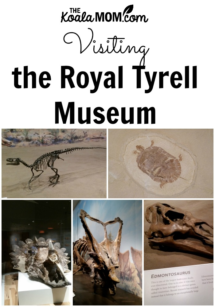 Visiting the Royal Tyrell Museum in Drumhellar, Alberta