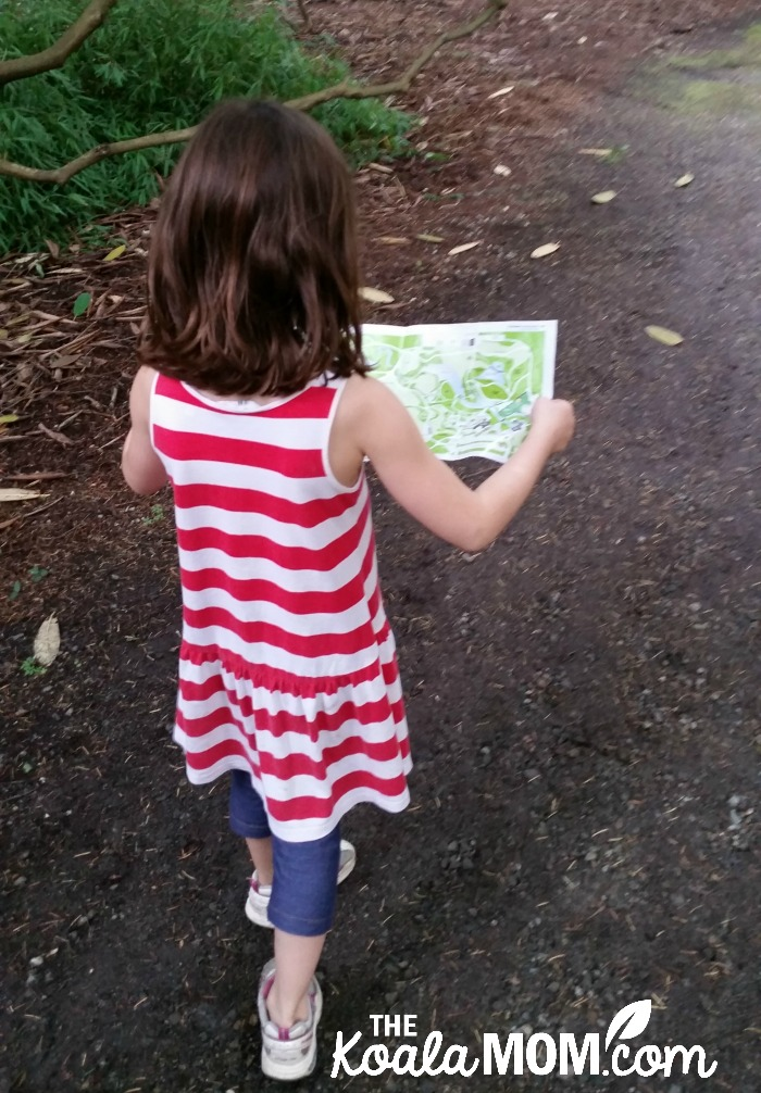Lily reading the map at VanDusen Gardens