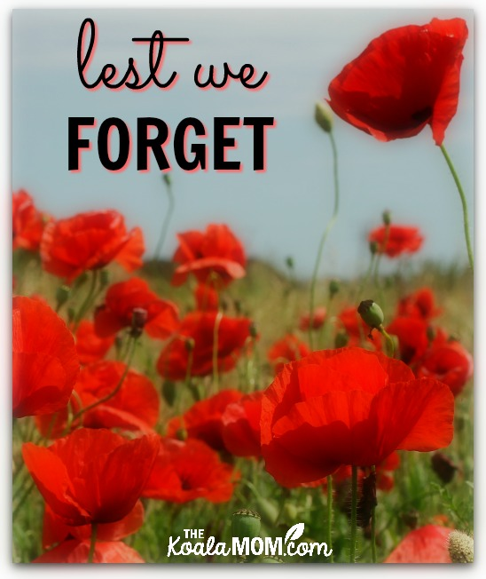 Lest we forget: resources for Remembrance Day in Vancouver