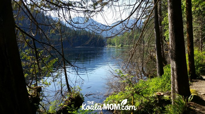 A view of Buntzen Lake from the trail