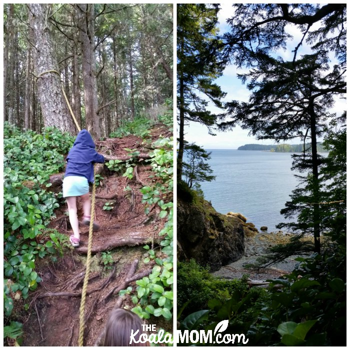 Hiking the Tex Lyon Trail near Port Hardy, BC