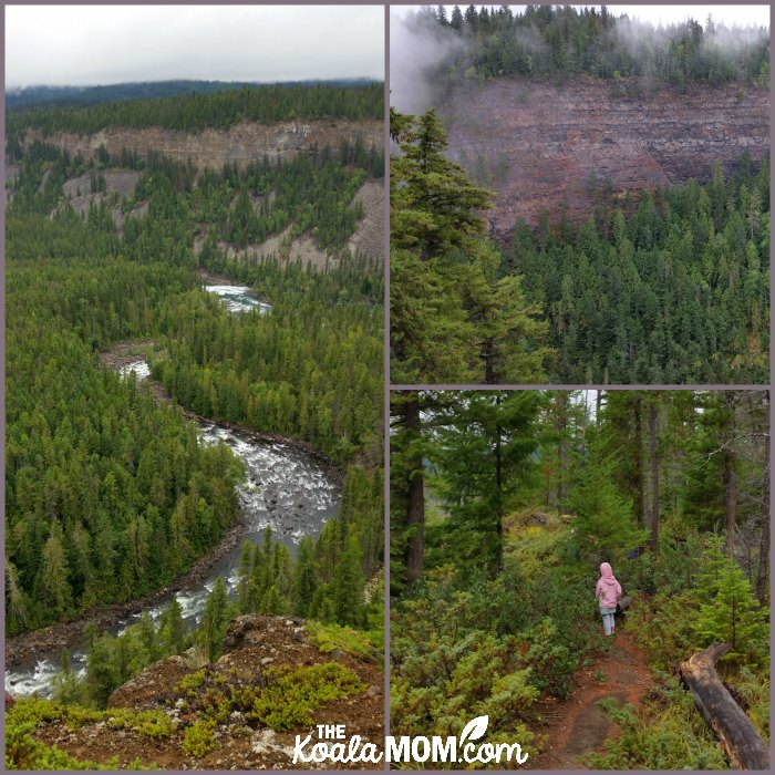 Gatling Gorge in Wells Gray Provincial Park