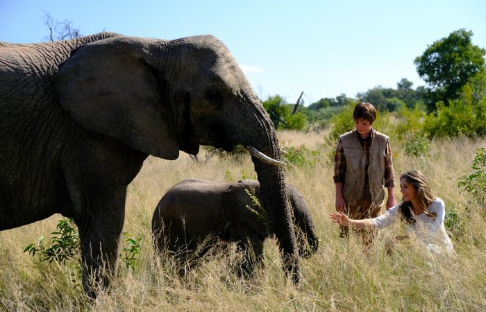 Elizabeth Hurley, Phoenix Wilder, and two elephants in the movie Phoenix Wilder and the Great Elephant Adventure
