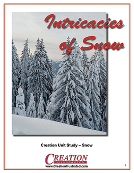 Intricacies of Snow - one of the nature unit studies from Creation Illustrated