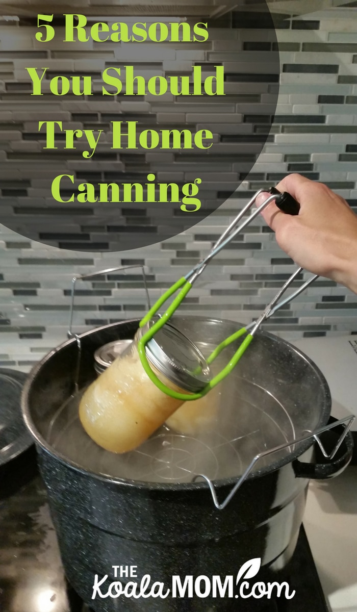 5 Reasons You Should Try Home Canning