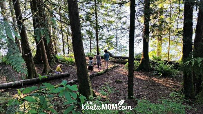 The Way girls explore the woods near their campsite in Cultus Lake, BC.