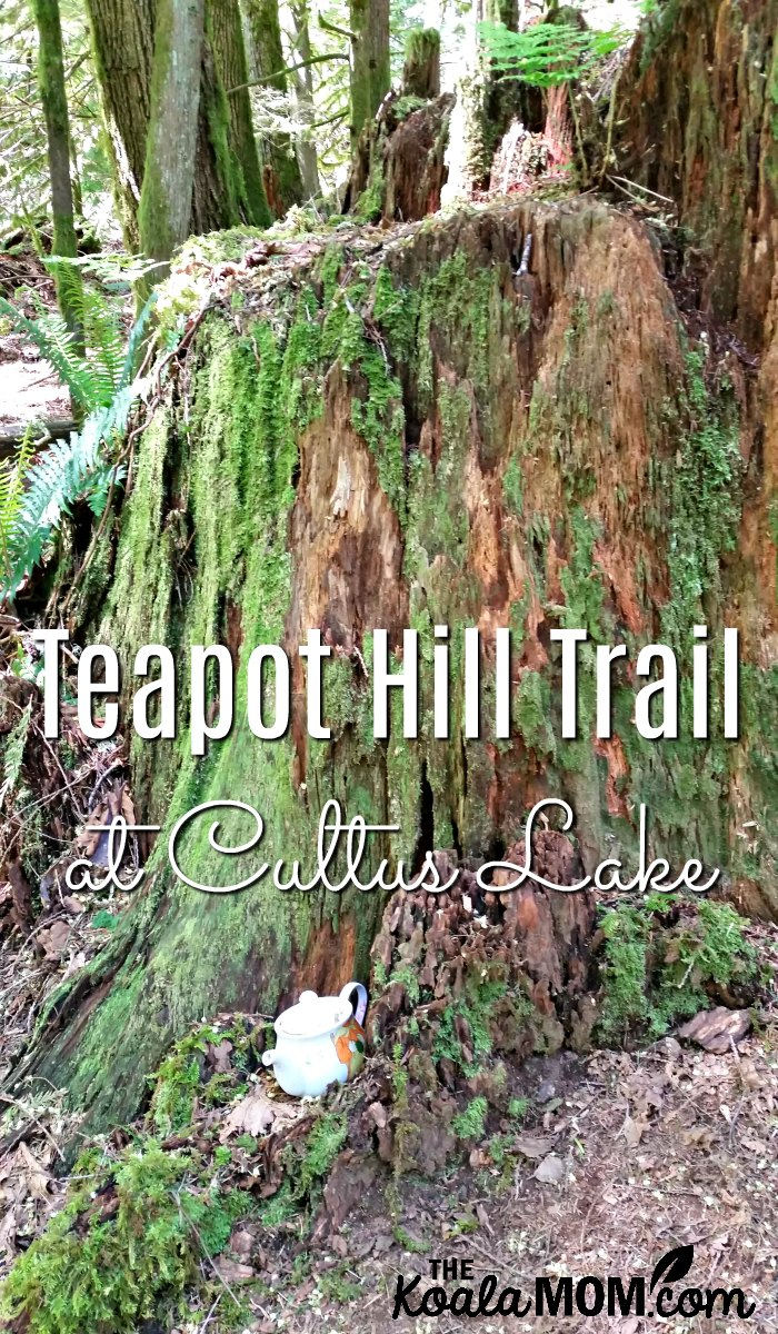 The Teapot Hill Trail at Cultus Lake