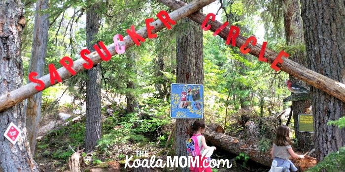 Alpine Alley at the Sea to Sky Gondola is a kid-friendly trail with tons of activities and information along the way.