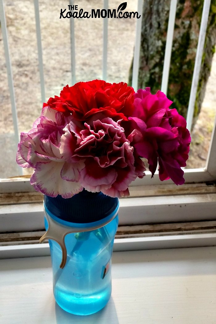 Carnations in the dorm room window.