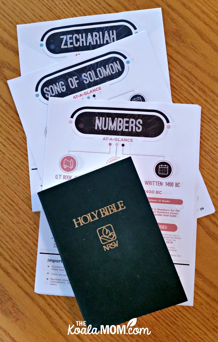 Books of the Bible at-a-glance printable Bible reference sheets with a Bible