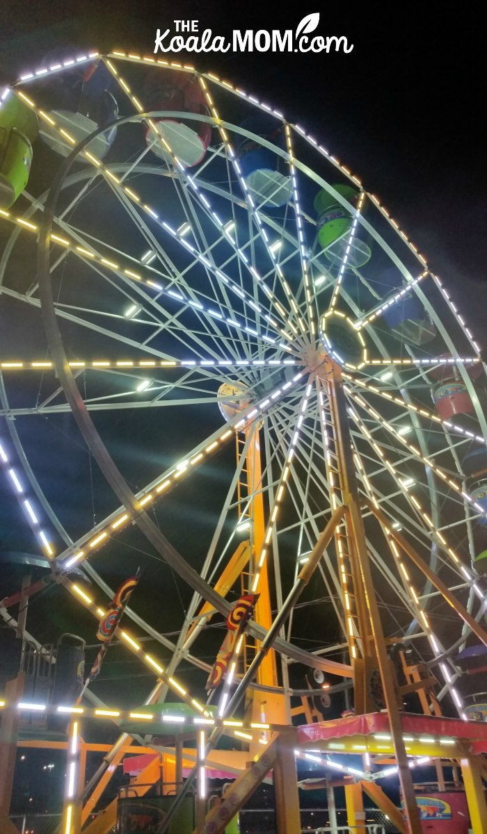 The ferris wheel at the Aurora Winter Festival in downtown Vancouver.