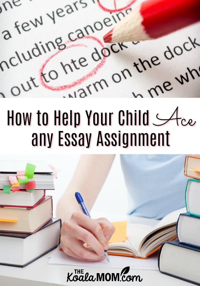 help your child write essays like a pro  the koala mom help your child write essays like a pro