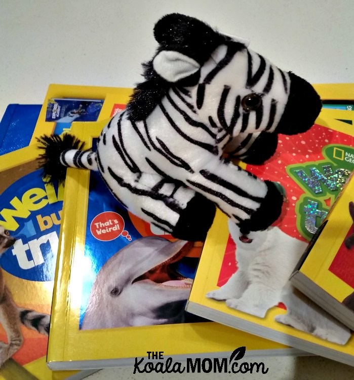 Stuffed zebra sitting on a pile of National Geographic Kids' Weird But True! books.