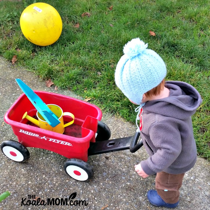 A boy with his little red wagon.