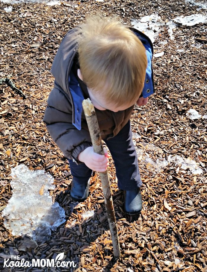 Baby playing in wood chips with a big stick.