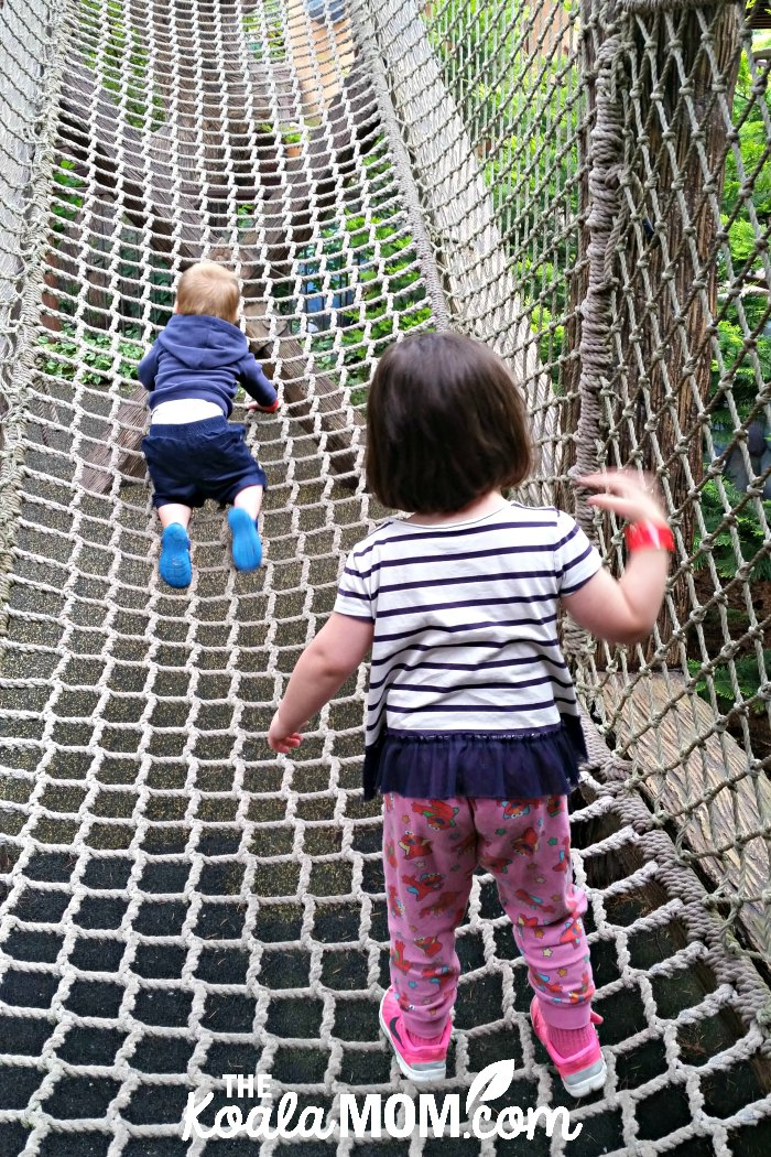 Toddlers climbing a rope net in the Wilderness Trail.