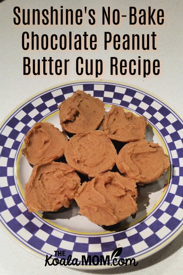 Sunshine's No-bake Chocolate Peanut Butter Cups Recipe