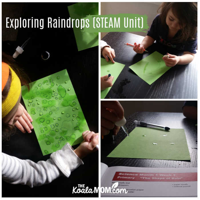 Exploring raindrops (STEAM unit study)