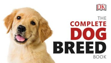 The Complete Dog Breed Book: choose the perfect dog for you (previously published as Top Dog) from DK Books