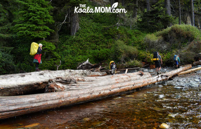 Crossing the logs over the river at Bear Beach.
